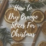 How to dry orange slices in oven for Christmas decorations
