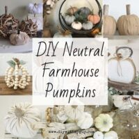 DIY Neutral Pumpkins Fall Decor