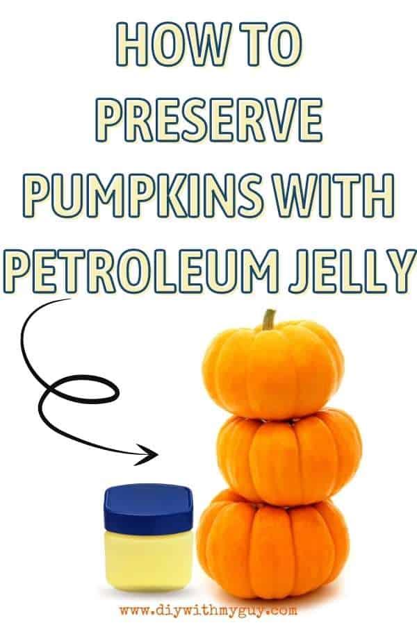 How Preserve A Pumpkin
