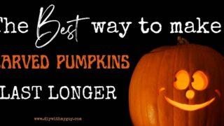 How to make carved pumpkins last