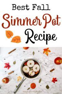 Fall Simmer Pot Recipe